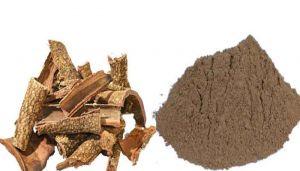 Banyan Bark Powder / Aalam Pattai / Vata Vriksham / Dodda Alada Mara / Bargad / Peralin Pal / Nyagrodha