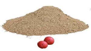 Peepal Fruit / Arasam Palam / Ravi Beradu Powder / Pipal / Aralimara / Ashvattha Powder