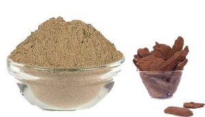 100 g Banyan Bark / Aalam Pattai Powder - hbkonline.in