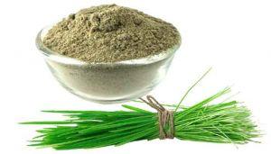 100 g Bermuda Grass / Arugampul / Doob Ghas Powder Online at best price - hbkonline.in