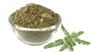 100 g Keezhanelli / Nela Nelli / Bhumi Amla  Powder - hbkonline.in