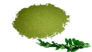 Country Gooseberry Powder / Keezhanelli Powder /Nela Usiri /Nela Nelli /Bhumi Amla /Kirganelia / Bhumyamalaki