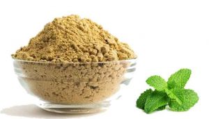 100 g Mint Dal / Pudina Paruppu Powder Online at best price - hbkonline.in