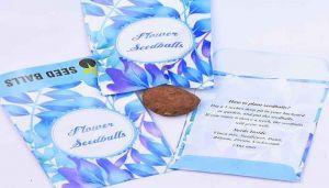 Buy Zinnia Flower Seed Balls Online - hbkonline.in