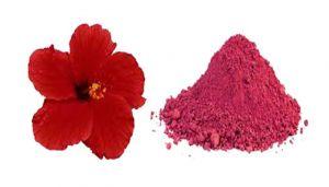 Hibiscus Flower / Semparuthi Poo / Javapushpamu / Gudhal Phool / Dasavala Hoovu / Japakusum Powder