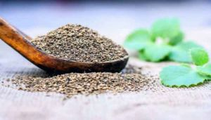 Ajwain Leaf Powder / Karpooravalli Powder / Vaamu Aku / Doddapatre / Patharchur / Panikoorka