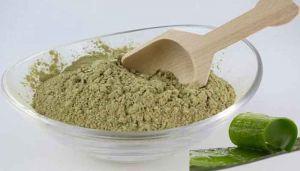 Aloe Vera / Kathalai / Kalabanda / Ghritkumari / Kattarvazha / Ambudhisrava Powder