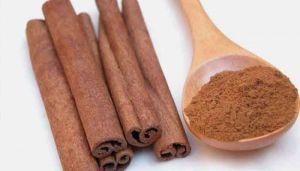 Cinnamon Bark Powder / Lavangapattai Powder / Regi Pandu / Dalchini /  Kath Ber / Parintoddali / Phalashayshira