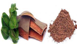 Arjun Tree Bark / Marutham Pattai / Thella Maddi / Hole Matthi / Arjun Sadado / Neer Maruthu / Viravriksha Powder