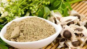 Moringa Seed Powder / Murungai Vithai Powder / Mochakamu / Nugge Mara / Munaga / Shigru / Madhushigruka
