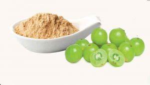 Indian Gooseberry Powder / Nellikai Powder / Usirikaya / Nelli / Amla Ka / Amalki