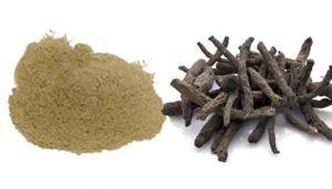Black Musli Powder / Nilapanai Kilangu Powder / Nelatadi / Kali Musli / Nelatenga / Nilappana / Talamuli