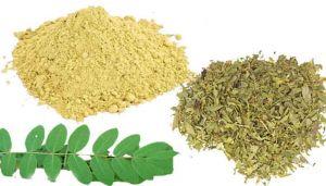Senna Leaves Powder / Nilavarai Powder / Sunamukhi / Sonamukhi / Senna / Nilavaka / Swarnapatri