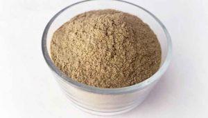 50 g Sensitive Plant / Thottal Surungi Powder  - hbkonline.in