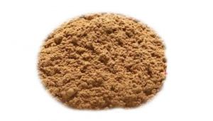 Indian Silver Fir Powder / Thalicha Pathiri Powder / Talispatra / Thaleesa Pathram