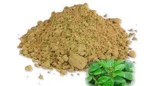 50 g Sirukurinjan / Gudmar Powder Online  - hbkonline.in