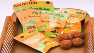 Buy Snake Gourd Seed Balls Online - hbkonline.in