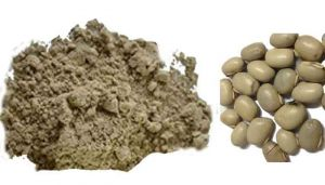 Velvet Bean Seed Powder / Poonaikali Vithai Powder / Pilliadugu / Kiwach / Nasugunni / Kapikachhu / Naikurana