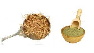 Khas Khas Root Powder / Vetiver Powder / Avurugaddivaeru / Usheera / Verran Mool / Ramacham / Laghubhaya