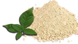 Indian Bael Leaves Powder / Vilva Ilai powder / Maredu / Bel Patra / Kuvalam / Bilva / Belada Mara