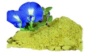 Slender Dwarf Morning Glory Powder / Vishnukranthi Powder / Nalla Vishnukranthi / Vishnu Granthi Soppu / Vishnukranthi / Shyamakrantha / Vishnukranta